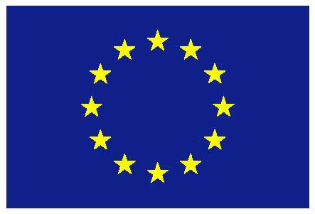 Flaga_UE.jpg (27.17 Kb)